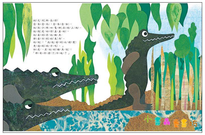 內頁放大:鱷魚柯尼列斯