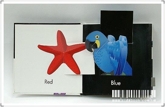 內頁放大:黑白立體書:Color Surprises