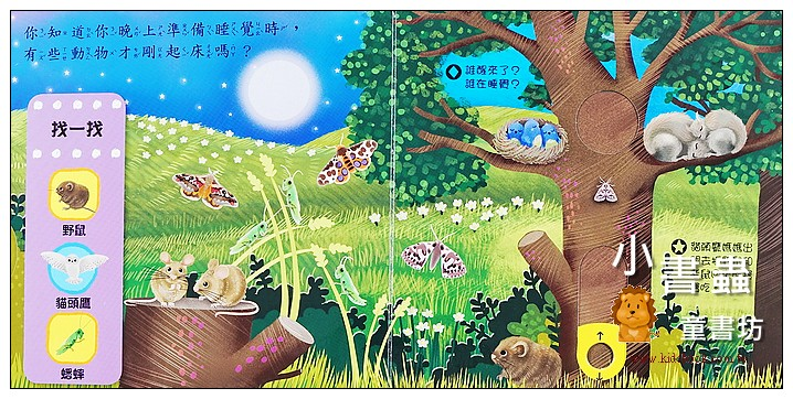 內頁放大:推、拉、轉硬頁操作書(中文):好棒的夜行動物 (79折)