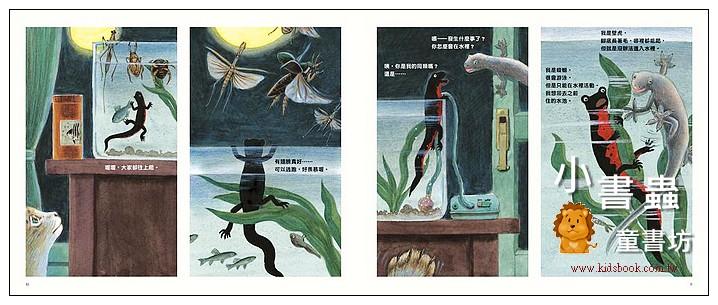 內頁放大:蠑螈與壁虎: 有點像又有點不一樣 (85折)