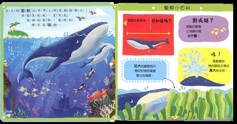內頁放大:推、拉、轉硬頁操作書(中文):奇妙的動物 (79折)