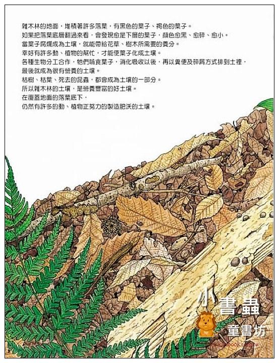 內頁放大:森林裡的土壤製造機: 雜木林的生態繪本 (85折)