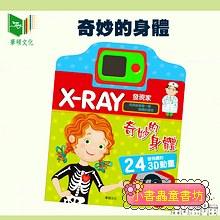 X-RAY發現家-奇妙的身體