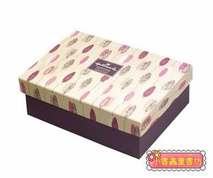 Hallmark圖紋風長型禮物盒(羽毛)L(8折)