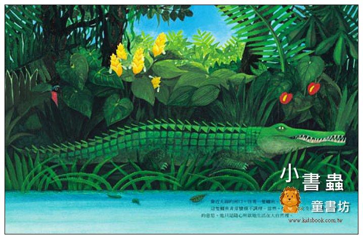 內頁放大:鱷魚: 叢林的憂鬱. 草原的冷漠 (平裝) (絕版書) 現貨:2