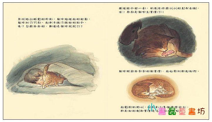 內頁放大:動物寶寶是怎麼出生的? (79折)