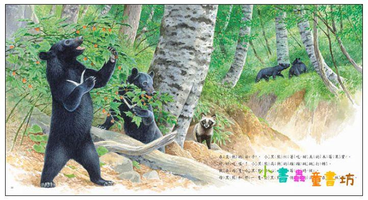 內頁放大:黑熊 (絕版書)