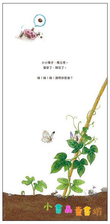 內頁放大:我的花卉寶寶 <親近植物繪本> (85折)