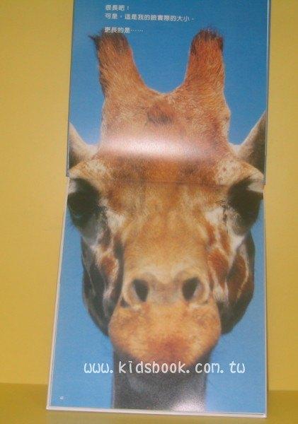 內頁放大:長頸鹿好長喔!:*大科學 (第一期) (導讀手冊+導讀CD) (特價書)