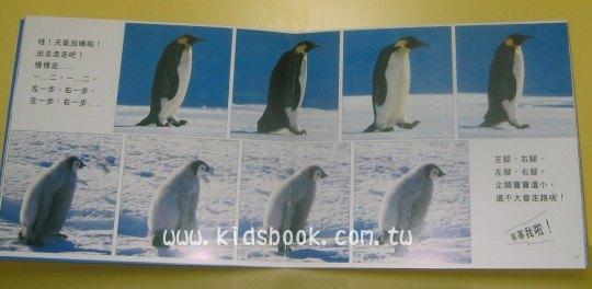內頁放大:我們是企鵝:*大科學 (第二十一期) (導讀手冊+導讀CD) (特價書)