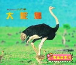 大鴕鳥(套書解套):*大科學 (第四十九期) (導讀手冊+導讀CD) (特價書)