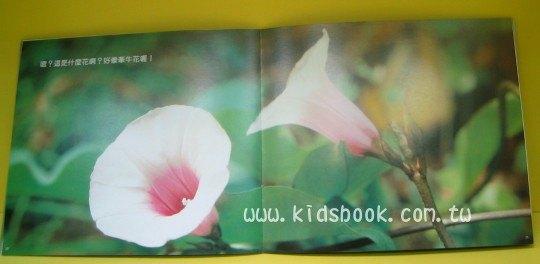 內頁放大:蔬菜花兒:*大科學(第六期) (導讀手冊+導讀CD) (特價書)