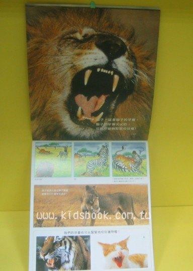 內頁放大:鱷魚的大尖牙:*大科學 (導讀手冊+導讀CD) (特價書)現貨數量:1