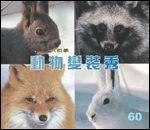 動物變裝秀:大科學
