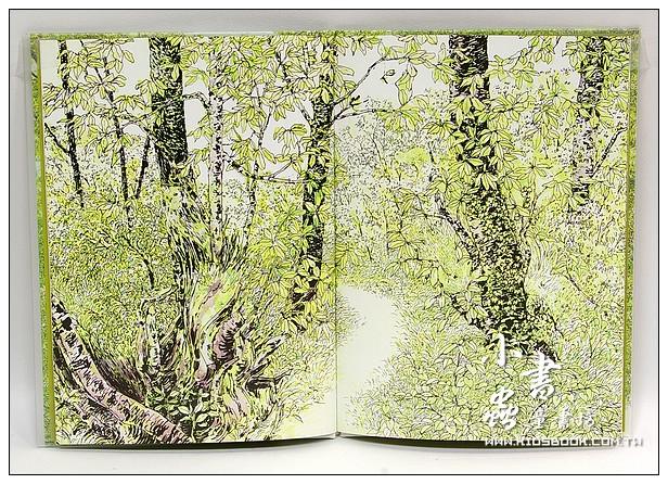 內頁放大:安野光雅:森林繪本