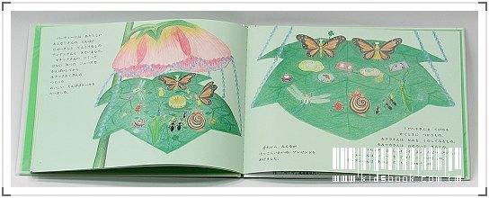 內頁放大:柳樹村昆蟲繪本1:沙拉和魔法的店(日文版,附中文翻譯)