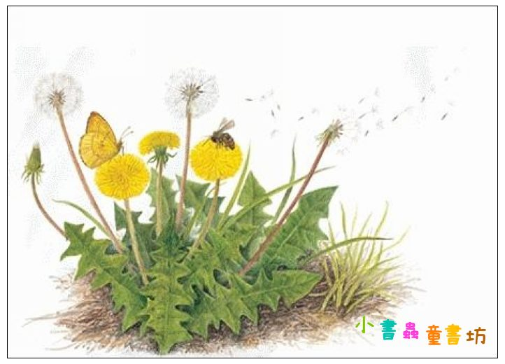內頁放大:我的春夏秋冬 (79折)