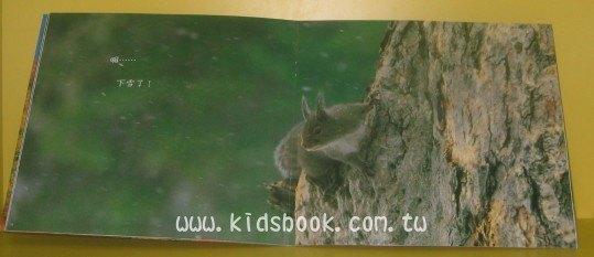 內頁放大:松鼠的小果子:*大科學 (第二十四期) (導讀手冊+導讀CD) (特價書)<親近植物繪本>