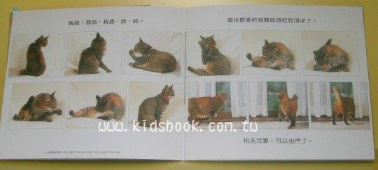 內頁放大:貓咪日記:*大科學 (導讀手冊+導讀CD) (特價書)