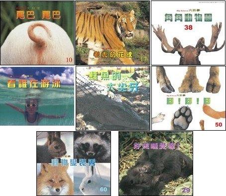 內頁放大:動物變變變 8合1:大科學