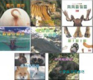 動物變變變 8合1:大科學