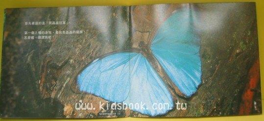 內頁放大:昆蟲冠軍:*大科學 (第八期) (導讀手冊+導讀CD) (特價書)
