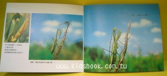 內頁放大:螳螂勇士:*大科學 (導讀手冊+導讀CD) (特價書)