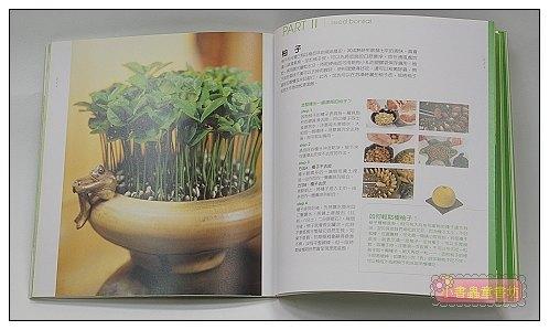 內頁放大:種子盆栽 <親近植物繪本>