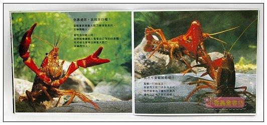 內頁放大:螯蝦的大剪刀:*大科學 (第十四期) (導讀手冊+導讀CD) (特價書)