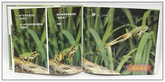 內頁放大:忍者雨蛙:*大科學 (第二期) (導讀手冊+導讀CD) (特價書)