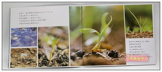 內頁放大:種子高飛:大科學