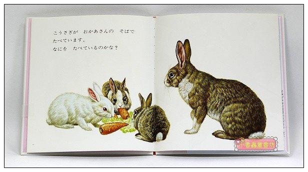 內頁放大:和媽媽一起:動物幼幼繪本(日文版,附中文翻譯)