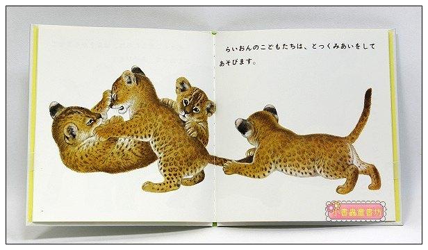 內頁放大:動物寶寶的遊戲:動物幼幼繪本(日文版,附中文翻譯)