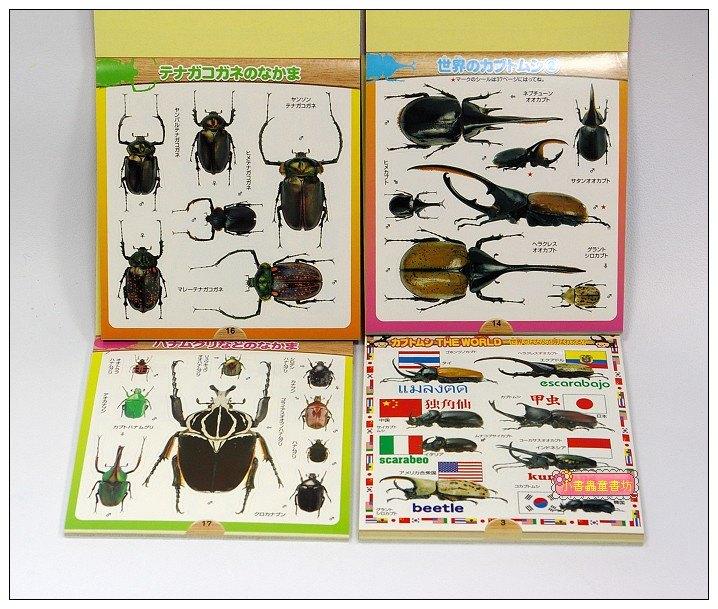 內頁放大:日本貼紙本:甲蟲(現貨數量:2)出清特價