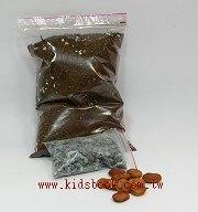 愛心樹(水黃皮)種子材料包