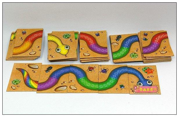 內頁放大:彩虹蛇Hisss(紙牌桌遊 初階)