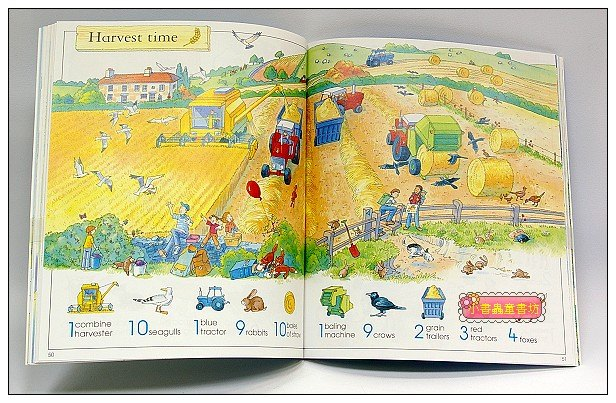 內頁放大:找一找遊戲書:The Usborne Big Book of Things to Spot