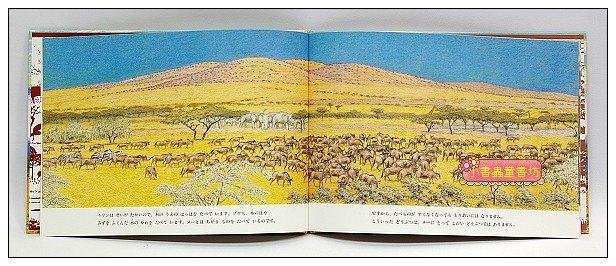 內頁放大:*非洲動物繪本(草原系列1):和媽媽失散的小牛羚(日文) (附中文翻譯)可訂數量:2