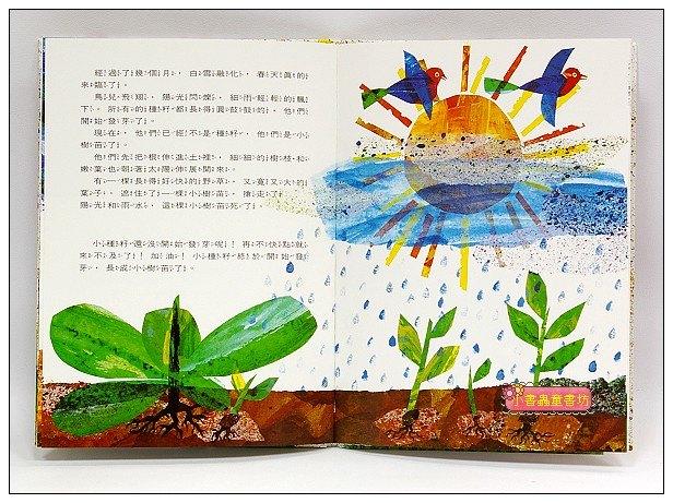 內頁放大:艾瑞.卡爾:小種籽(79折) <親近植物繪本>