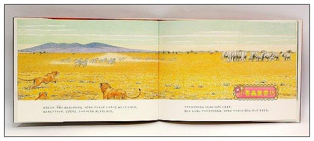 內頁放大:非洲動物繪本(大象系列1):回憶(絕版)(日文) (附中文翻譯)