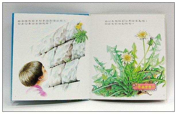 內頁放大:蒲公英(79折) <親近植物繪本>