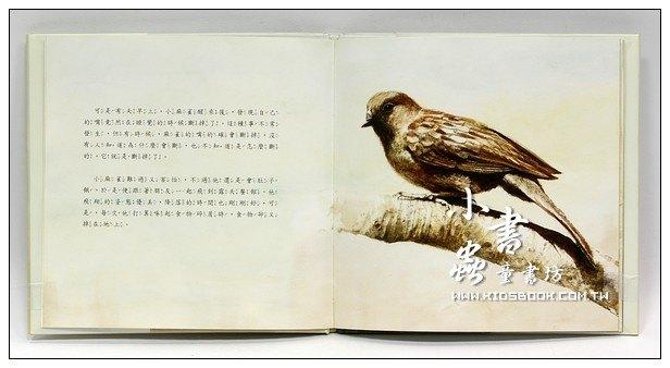 內頁放大:斷嘴鳥