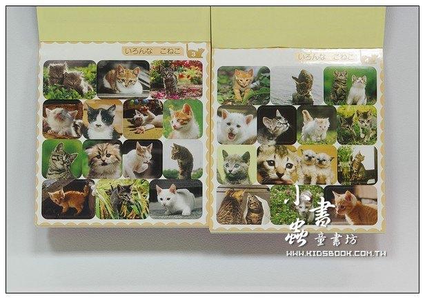 內頁放大:日本貼紙本:可愛貓咪2 (岩合光昭)現貨數量:2(出清特價)