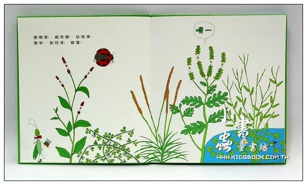 內頁放大:環保繪本(初階)豐富的地球(85折)