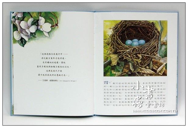內頁放大:小笛的旅程(絕版書 )