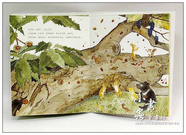 內頁放大:一棵倒下來的大的山毛櫸(日文版,附中文翻譯)<親近植物繪本>