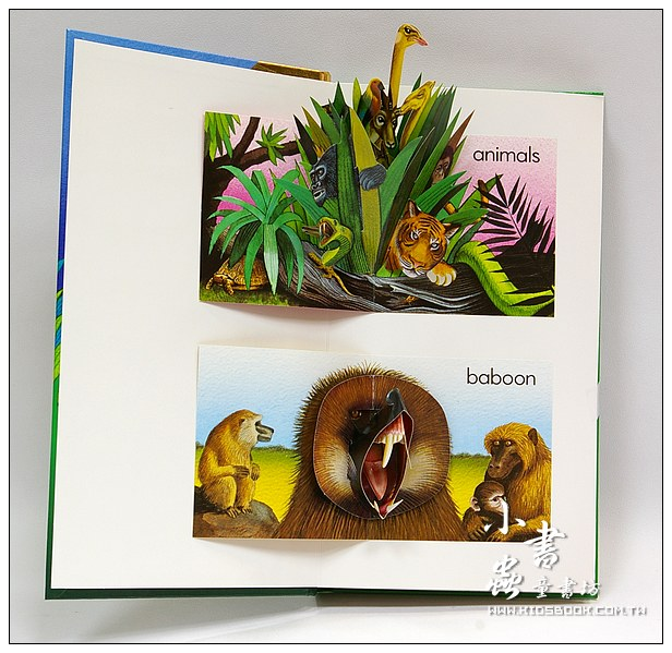 內頁放大:字母立體書A Is For Animals 10週年版