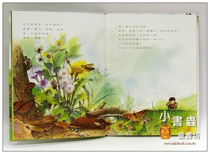 內頁放大:有一棵植物叫龍葵 <親近植物繪本>
