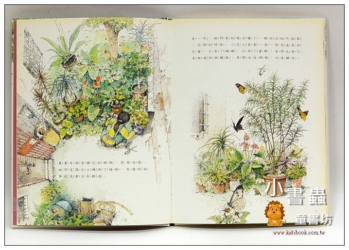 內頁放大:無尾鳳蝶的生日(福爾摩莎自然繪本3)