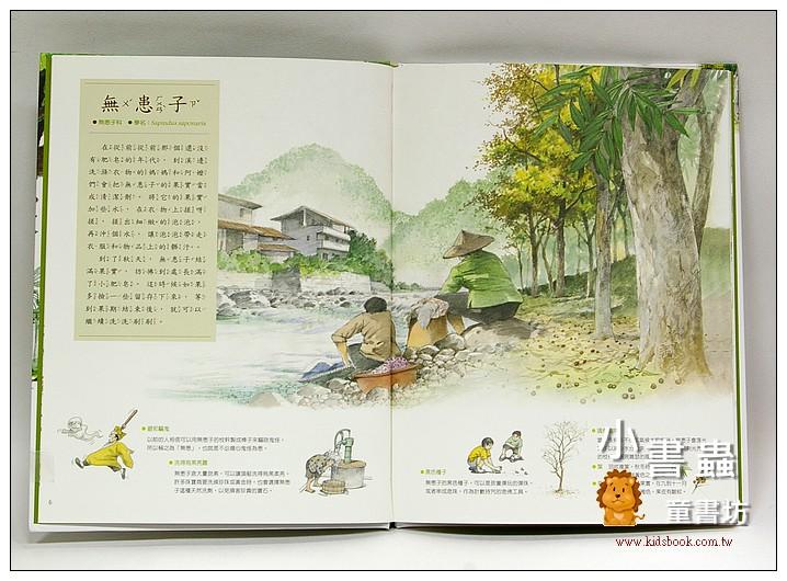 內頁放大:看見台灣大樹(福爾摩莎自然繪本5) <親近植物繪本>